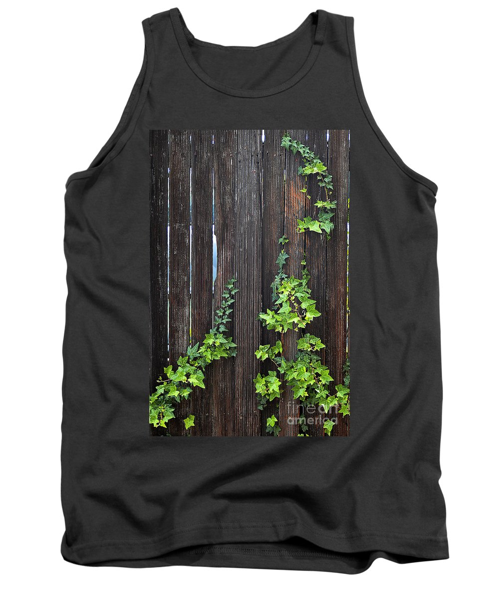 Clay Tank Top featuring the photograph Ivy On Fence by Clayton Bruster