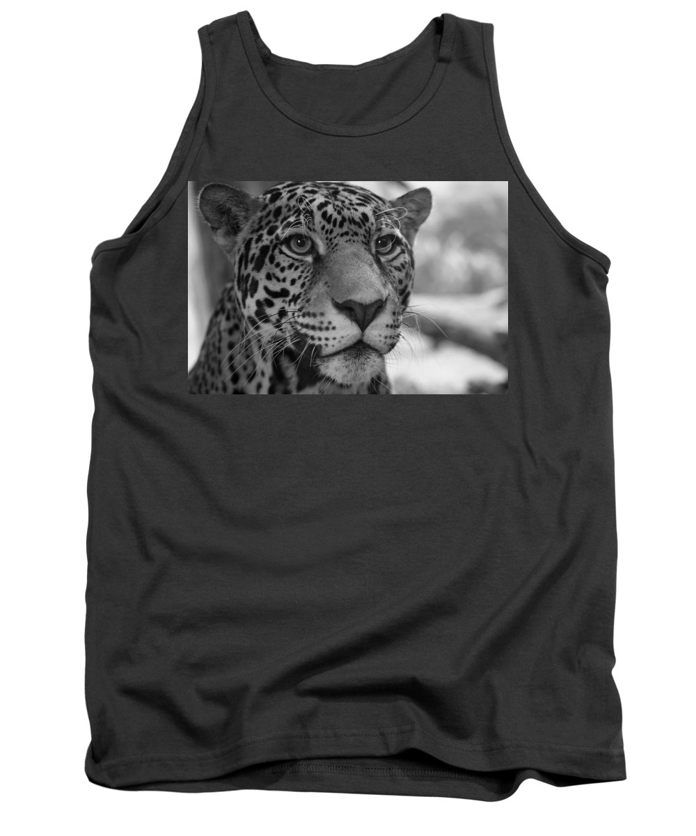 Jaguar Tank Top featuring the photograph Jaguar In Black And White by Sandy Keeton