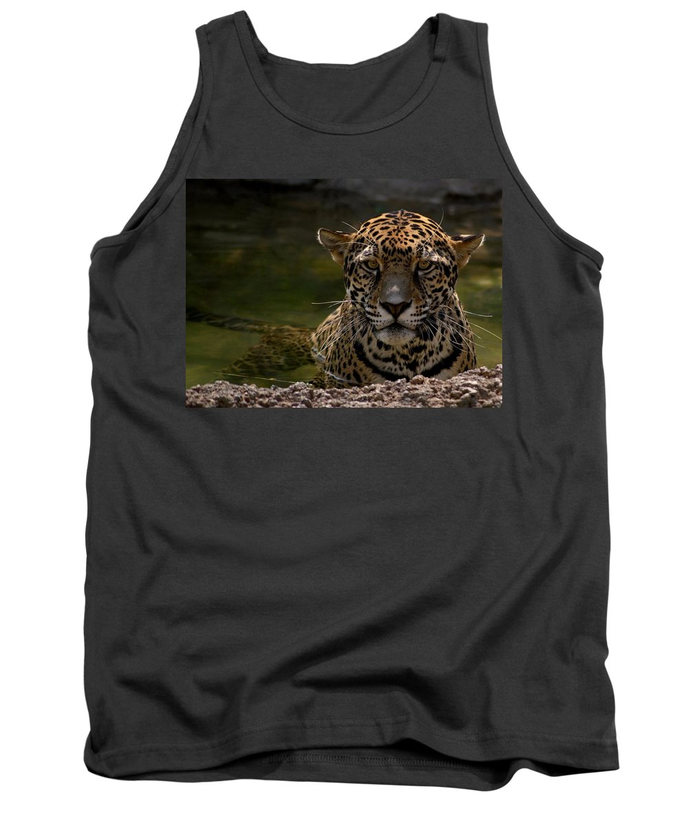 Jaguar Tank Top featuring the photograph Jaguar In The Water by Sandy Keeton