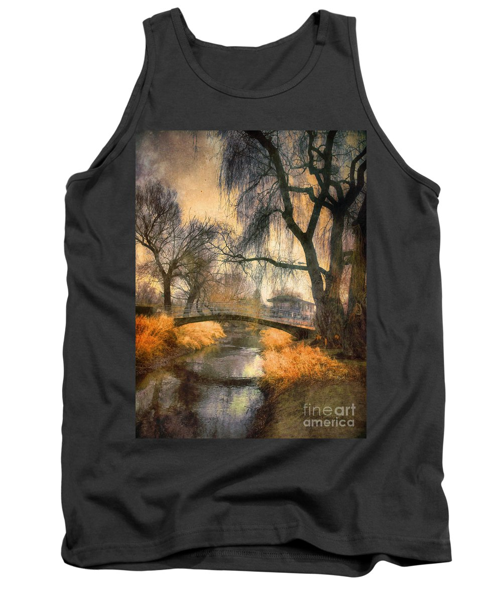 Bridge Tank Top featuring the photograph January 13 2010 by Tara Turner