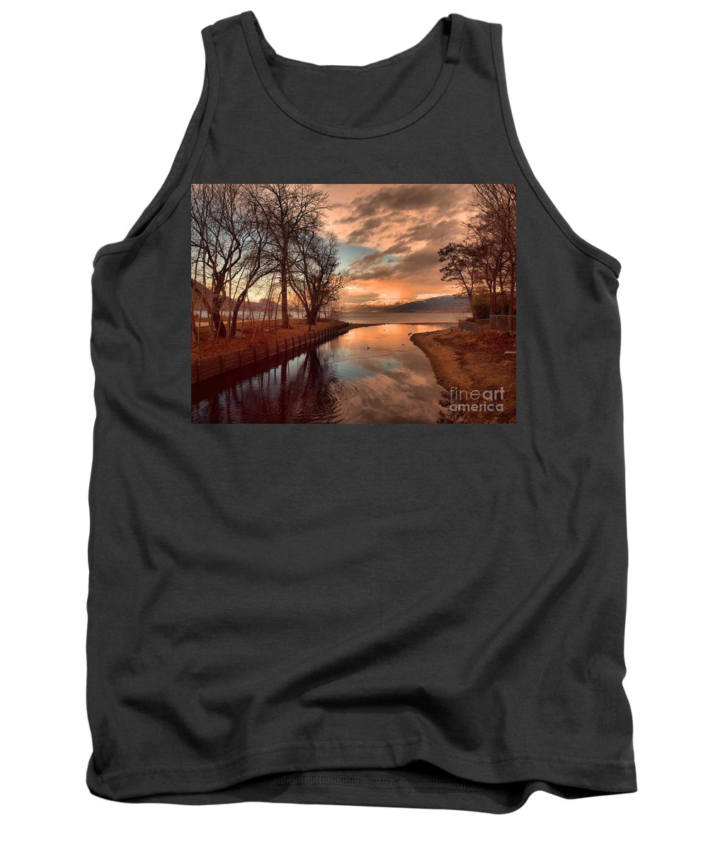 Sunset Tank Top featuring the photograph January 15 2010 by Tara Turner