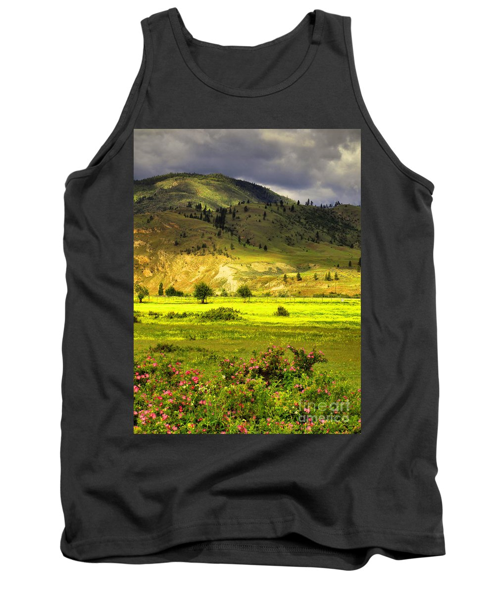 Trees Tank Top featuring the photograph June 7 2010 by Tara Turner