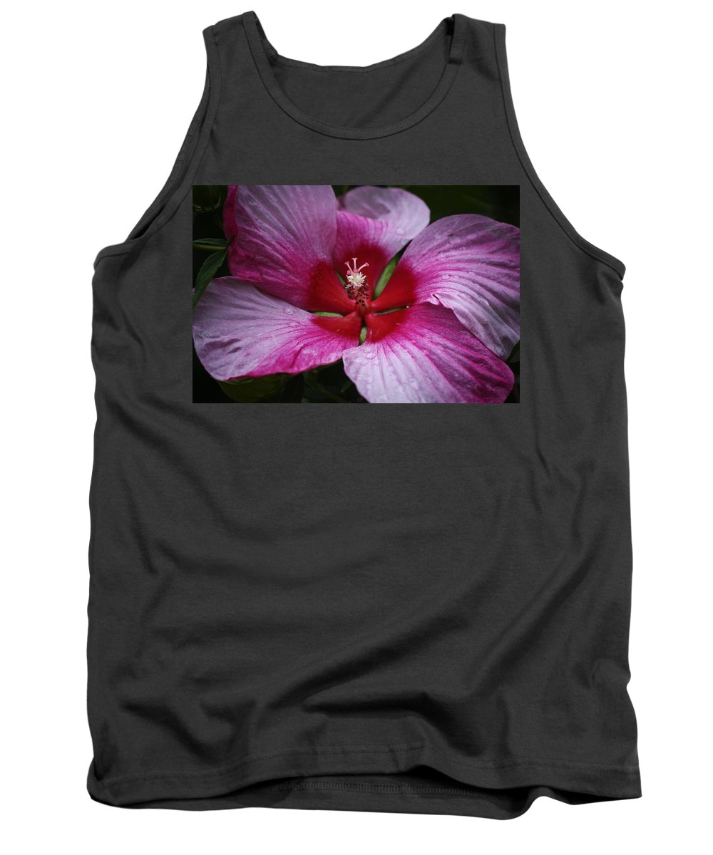 Hibiscus Tank Top featuring the photograph Junes Hibiscus 1 by Teresa Mucha