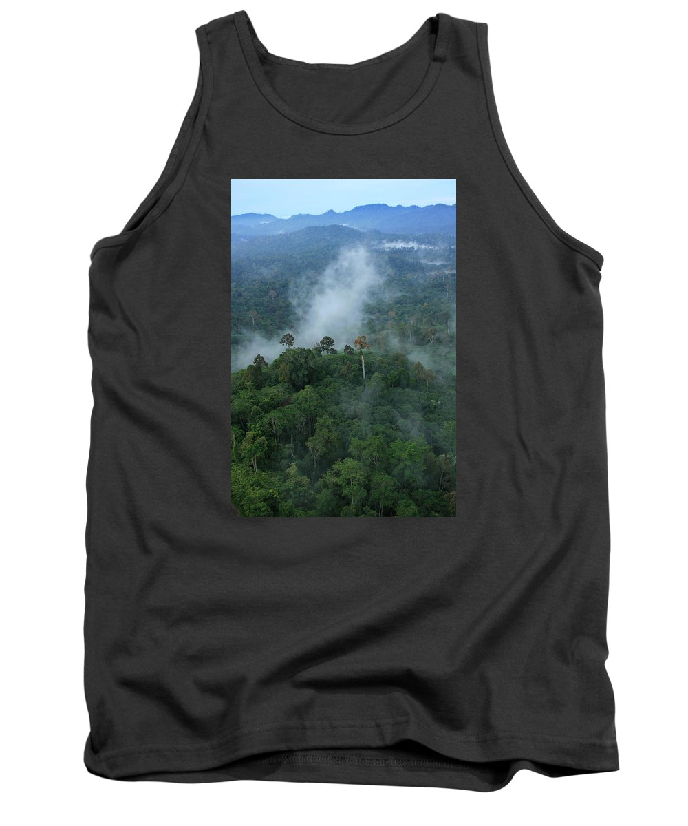 Borneo Tank Top featuring the photograph Jungle Mist by Andrew Parker