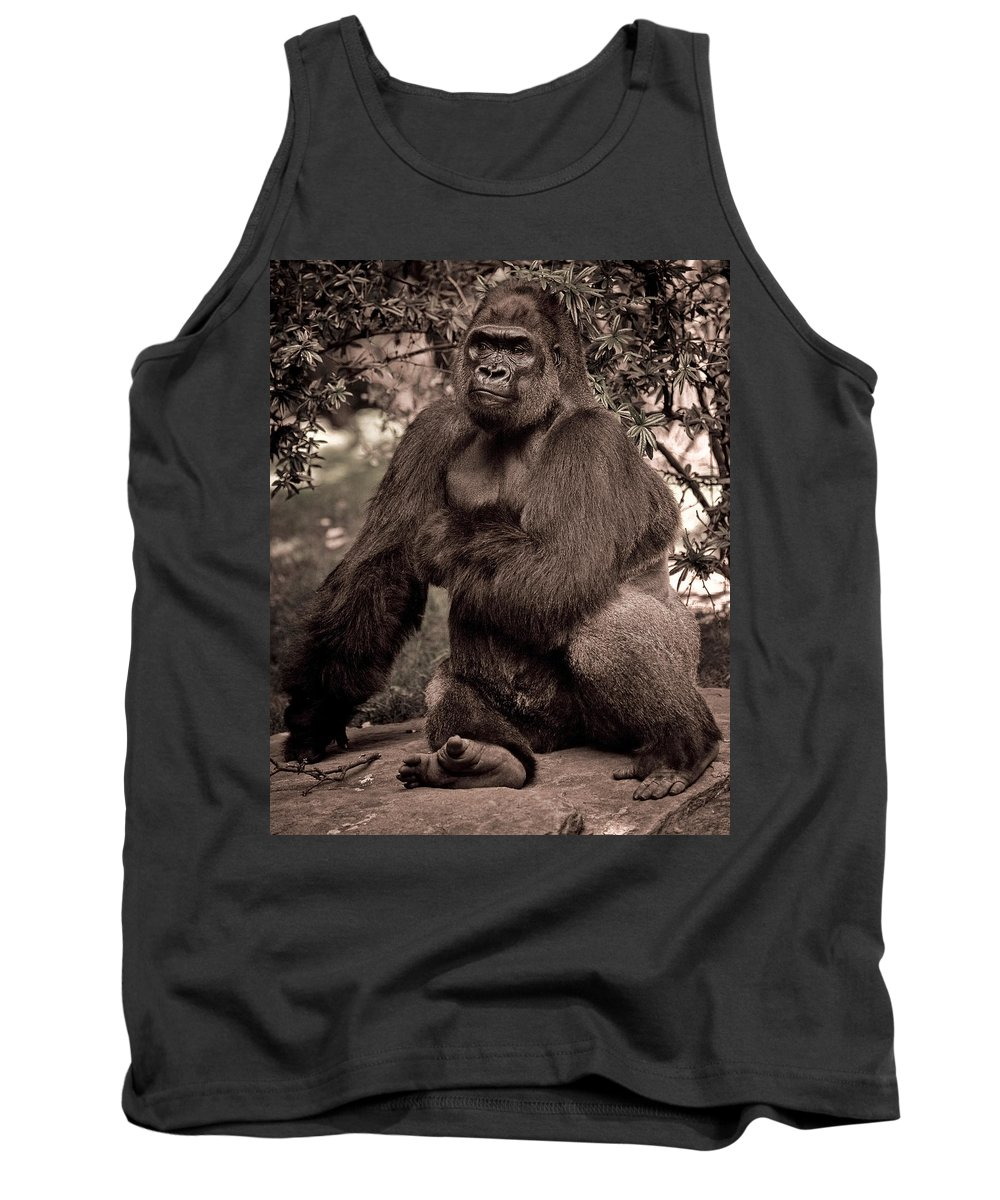 Gorilla Tank Top featuring the photograph Just A Cuddly Guy by Chris Lord