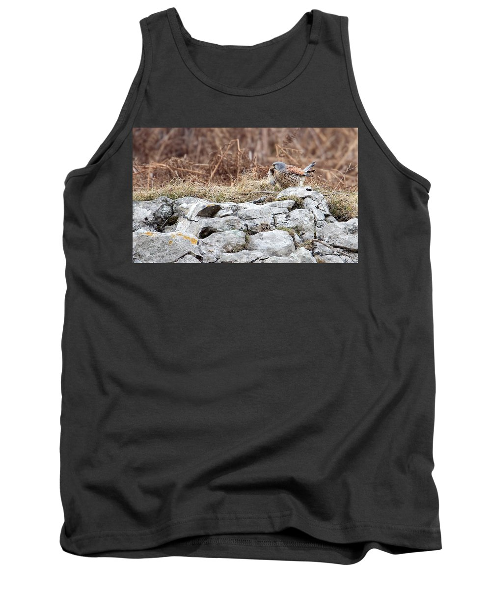 Kestrel Tank Top featuring the photograph Kestrel With Prey by Bob Kemp