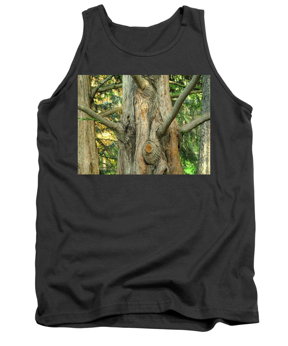 Tree Tank Top featuring the photograph Knarled by Ian MacDonald