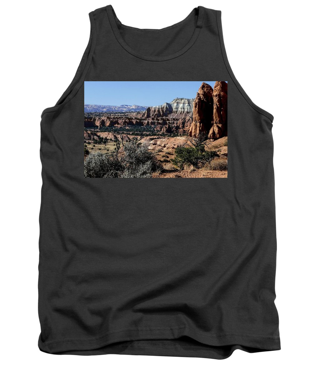 Bright Tank Top featuring the photograph Kodachrome Basin Panorama by NaturesPix