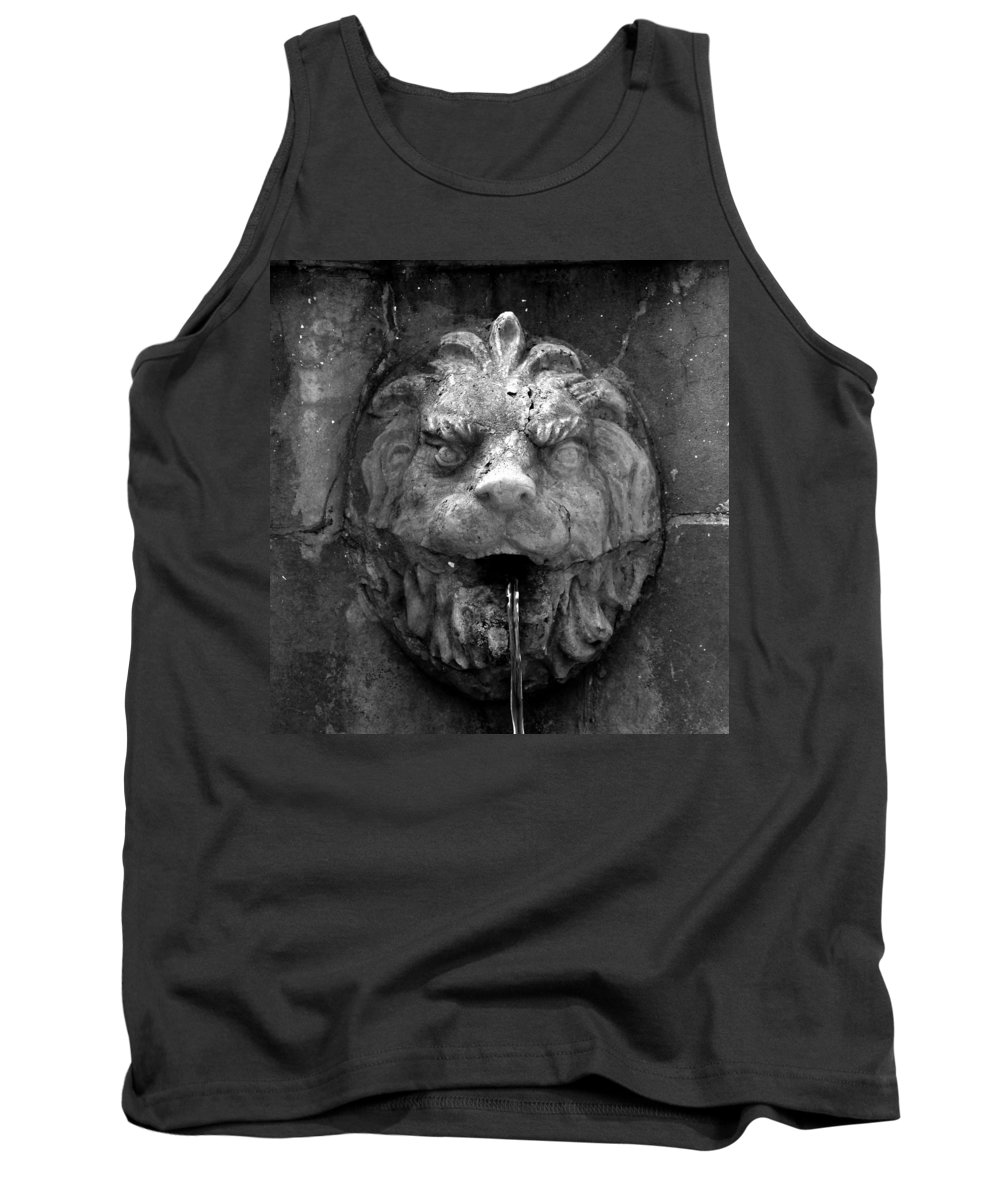 Lion Tank Top featuring the photograph Koreshans Lion by David Lee Thompson