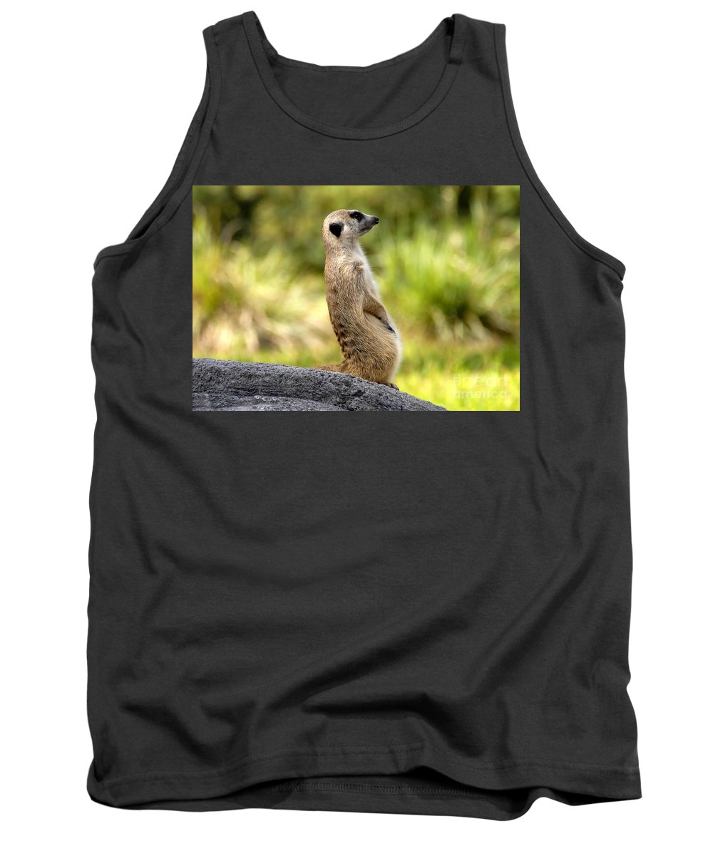 Laid Back Tank Top featuring the photograph Laid Back by David Lee Thompson