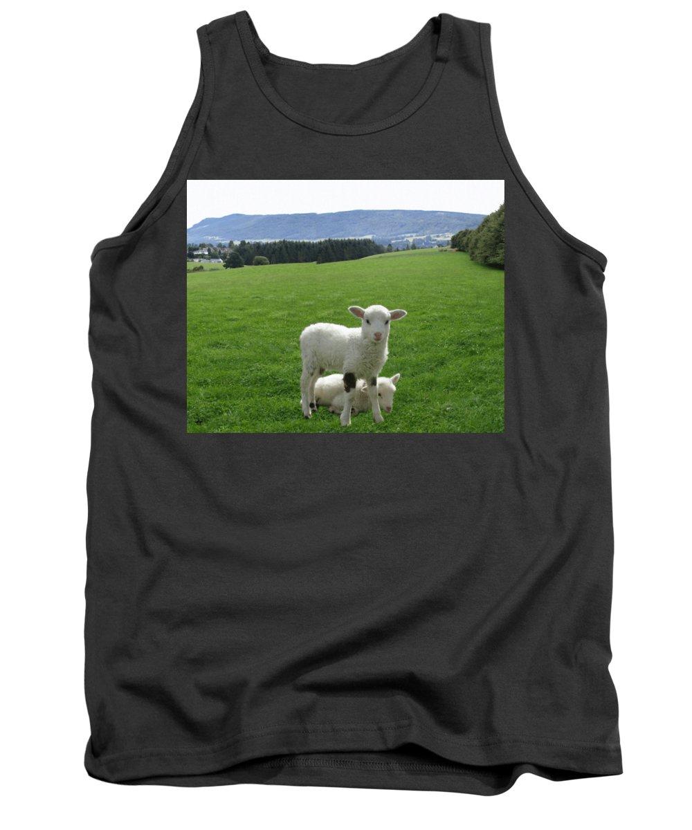 Lamb Tank Top featuring the digital art Lambs In Pasture by Dominic Yannarella