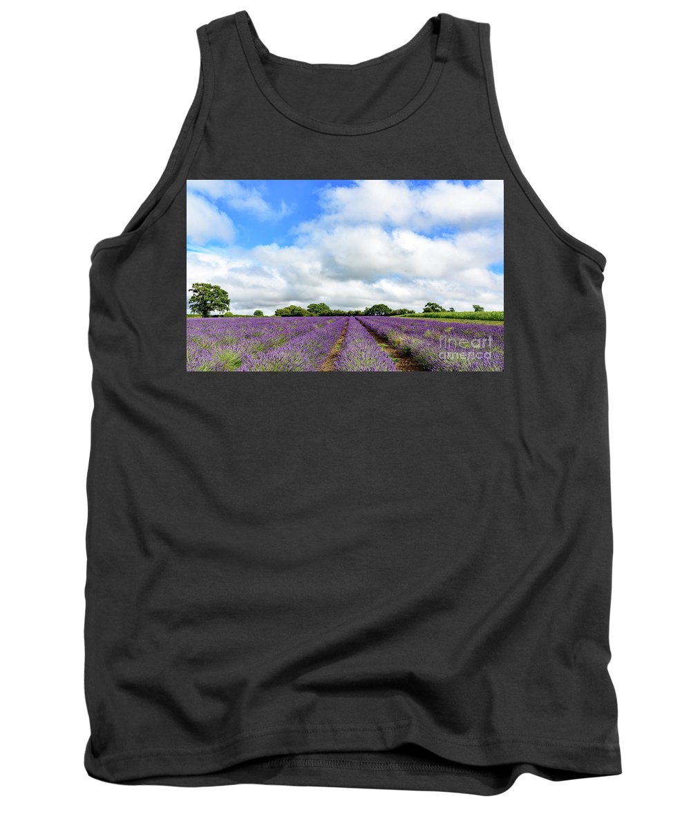 Lavender Tank Top featuring the photograph Lavender Field by Colin Rayner