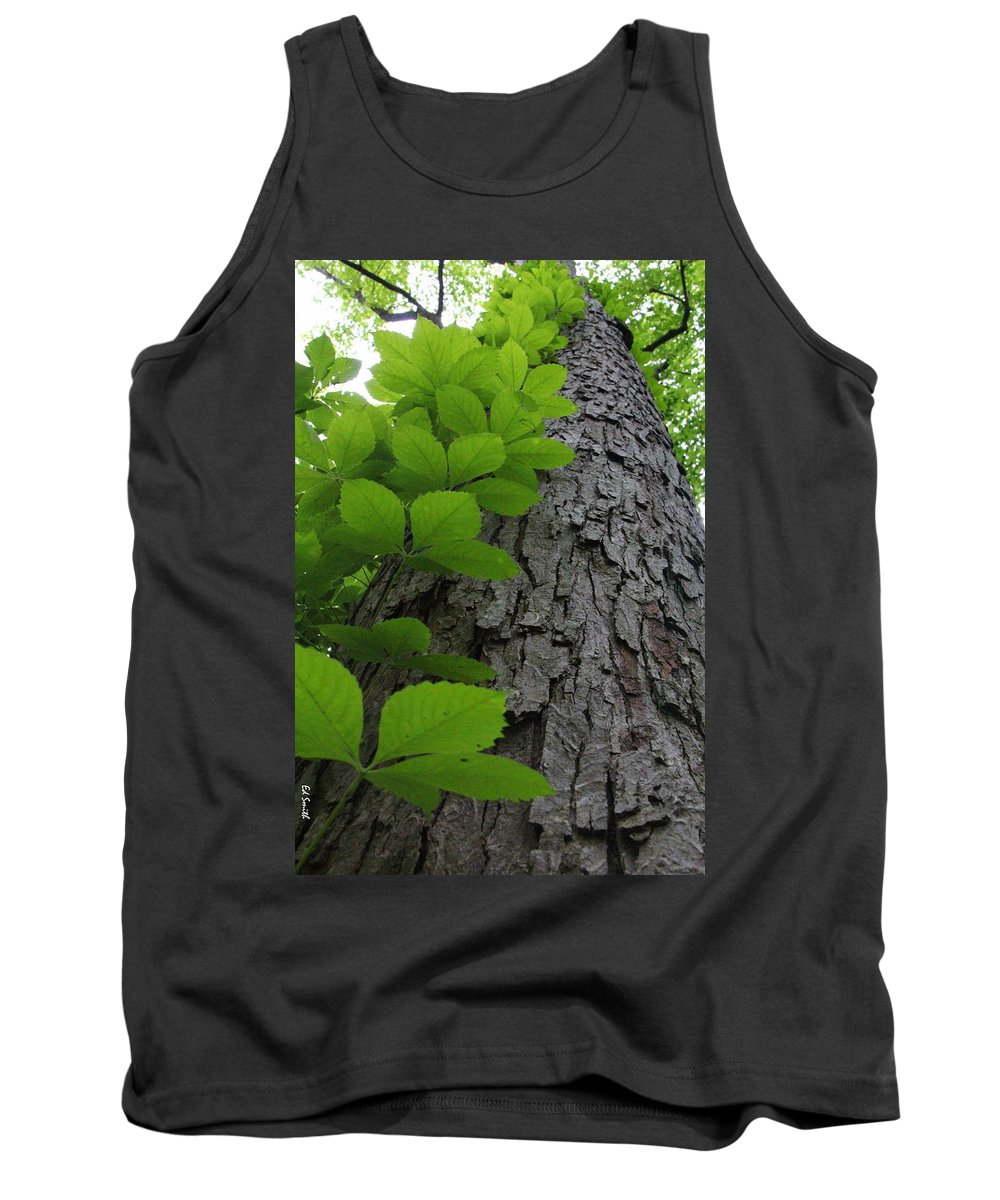 Leafy Ladder Tank Top featuring the photograph Leafy Ladder by Ed Smith