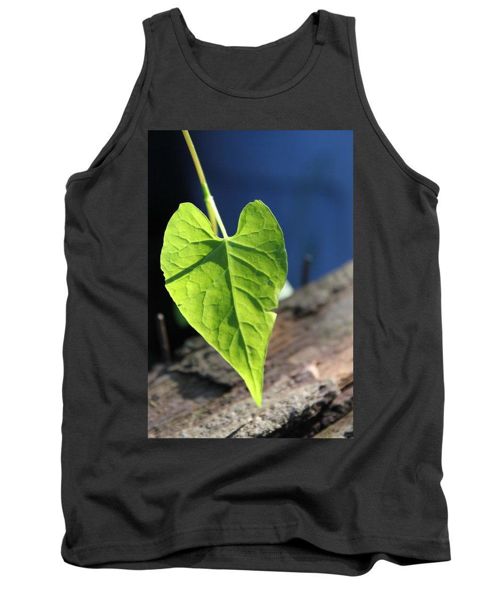 Leaf Tank Top featuring the photograph Leafy Veins by Lauri Novak