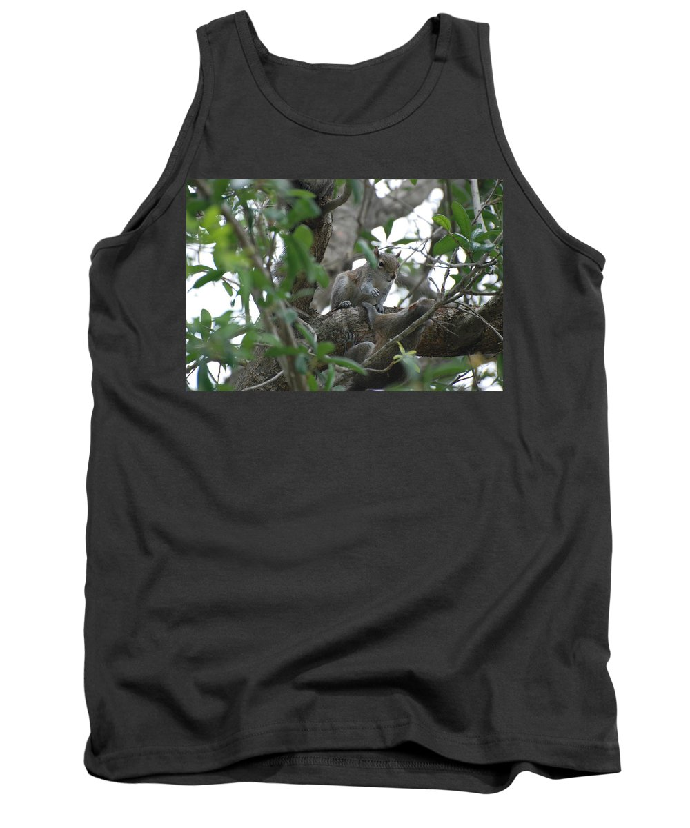 Squirrel Tank Top featuring the photograph Lending A Helping Hand by Rob Hans