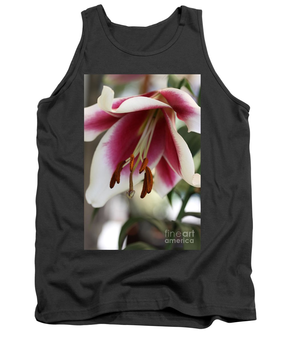 White Pink Tank Top featuring the photograph Lily Beauty by Christiane Schulze Art And Photography