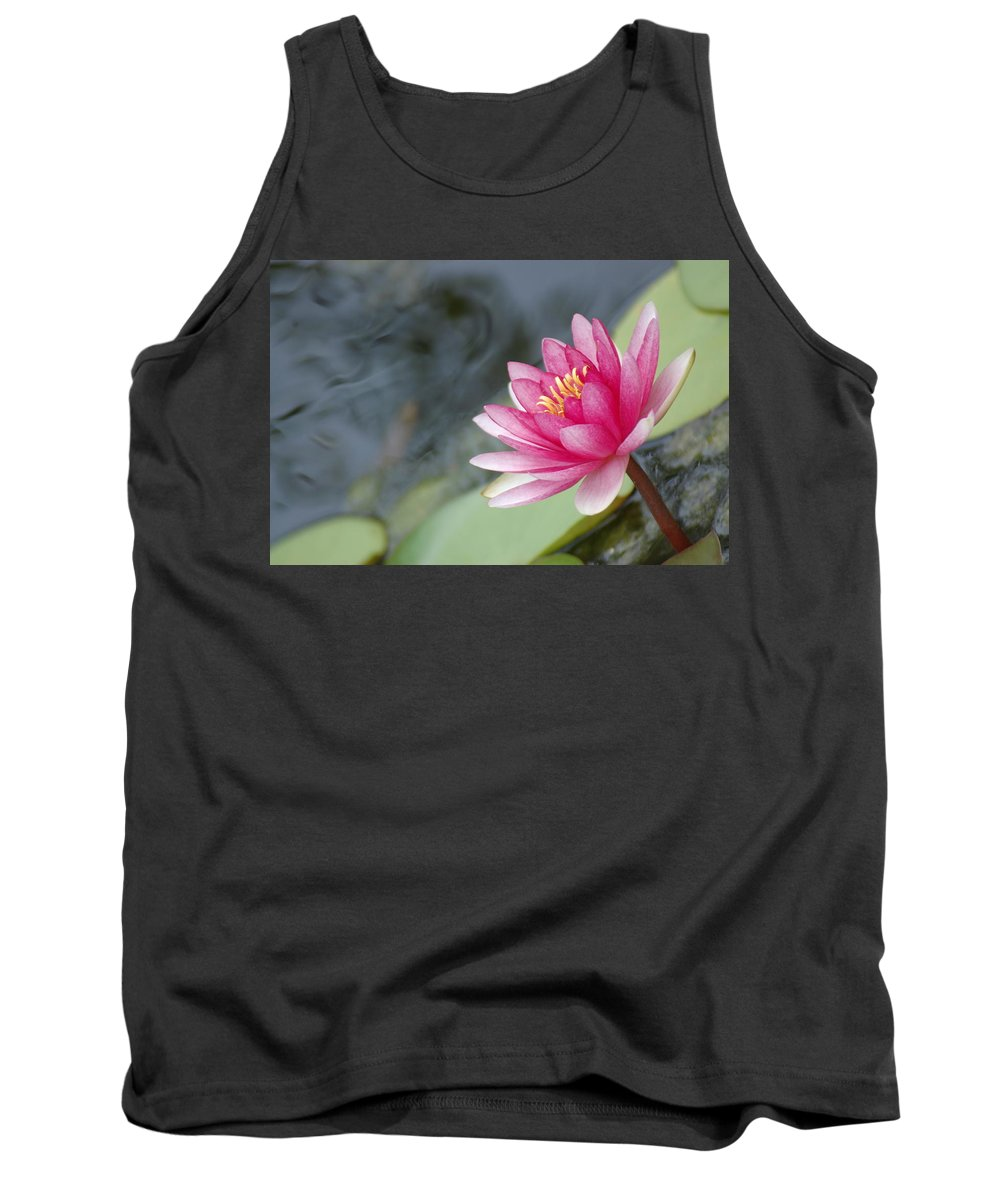 Lily Pads Tank Top featuring the photograph Lily Pads by Donna Bentley