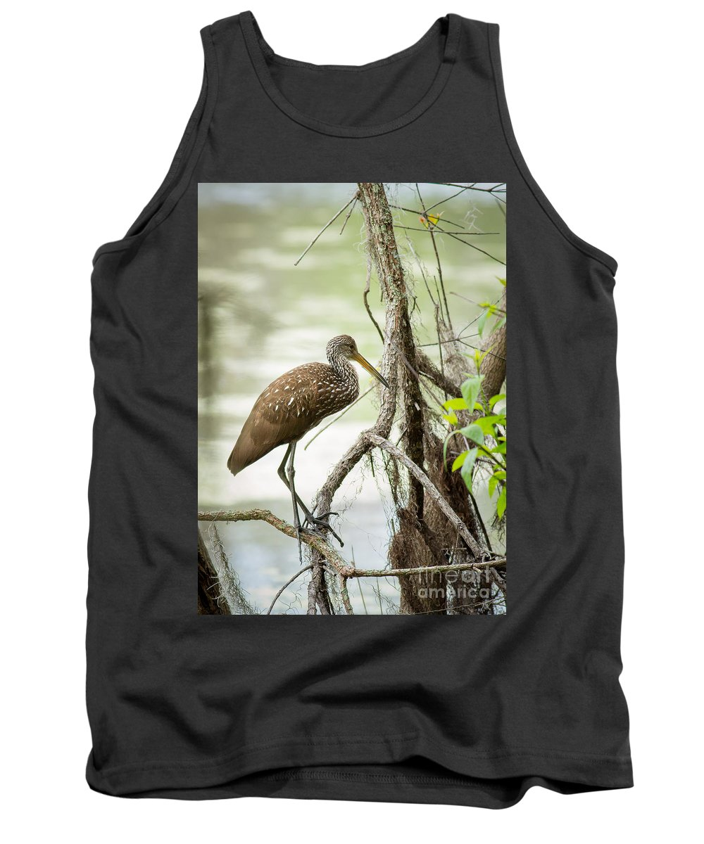 Limpkin Tank Top featuring the photograph Limpkin by Brad Marzolf Photography