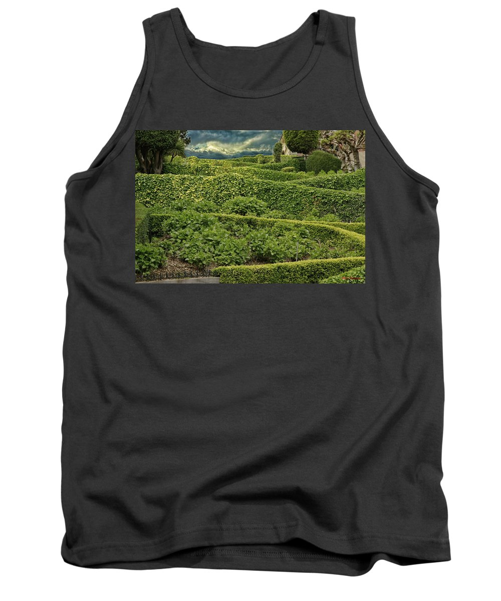 Art Photography Tank Top featuring the photograph Lombard by Blake Richards