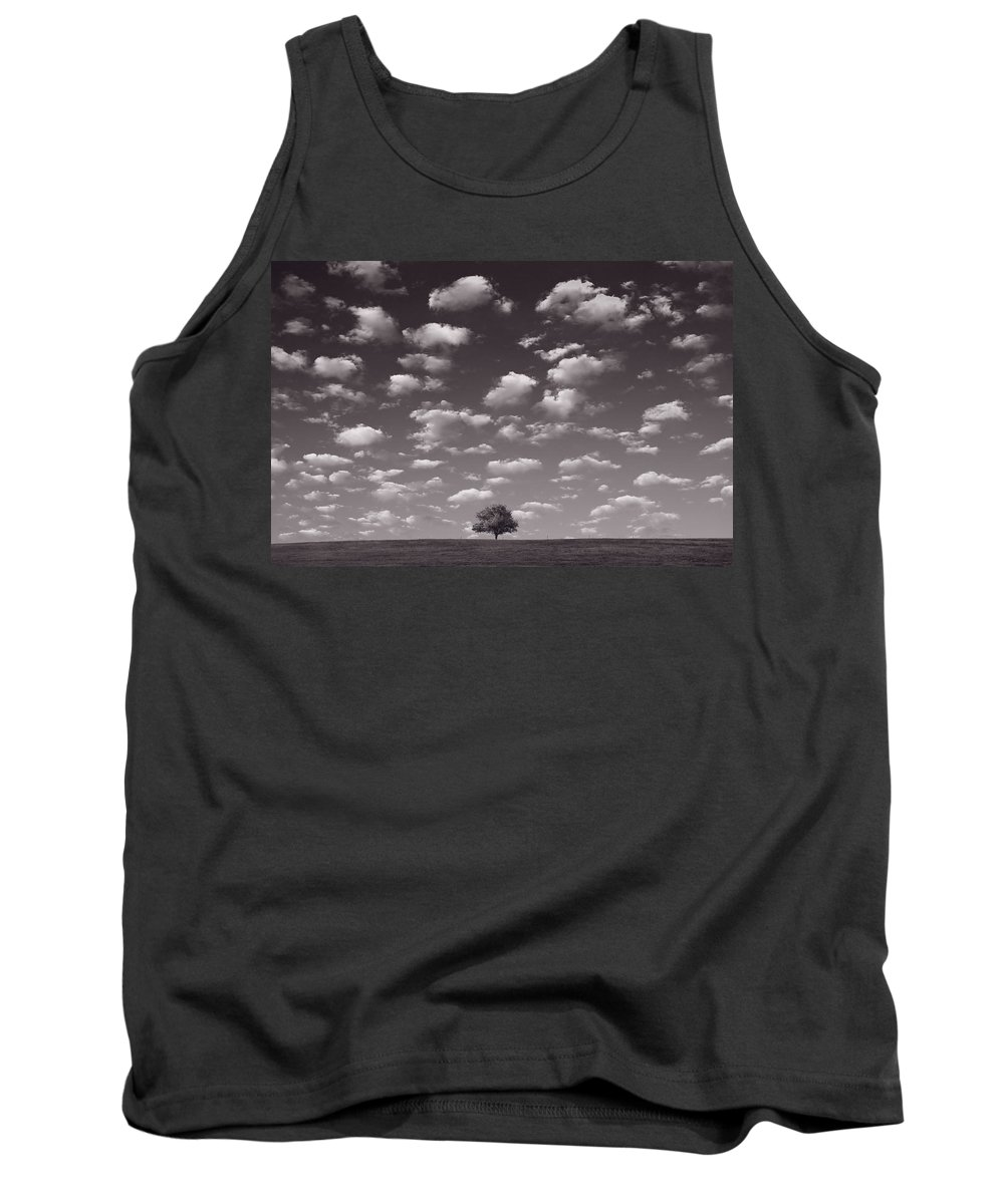 Blue Tank Top featuring the photograph Lone Tree Morning In B And W by Steve Gadomski