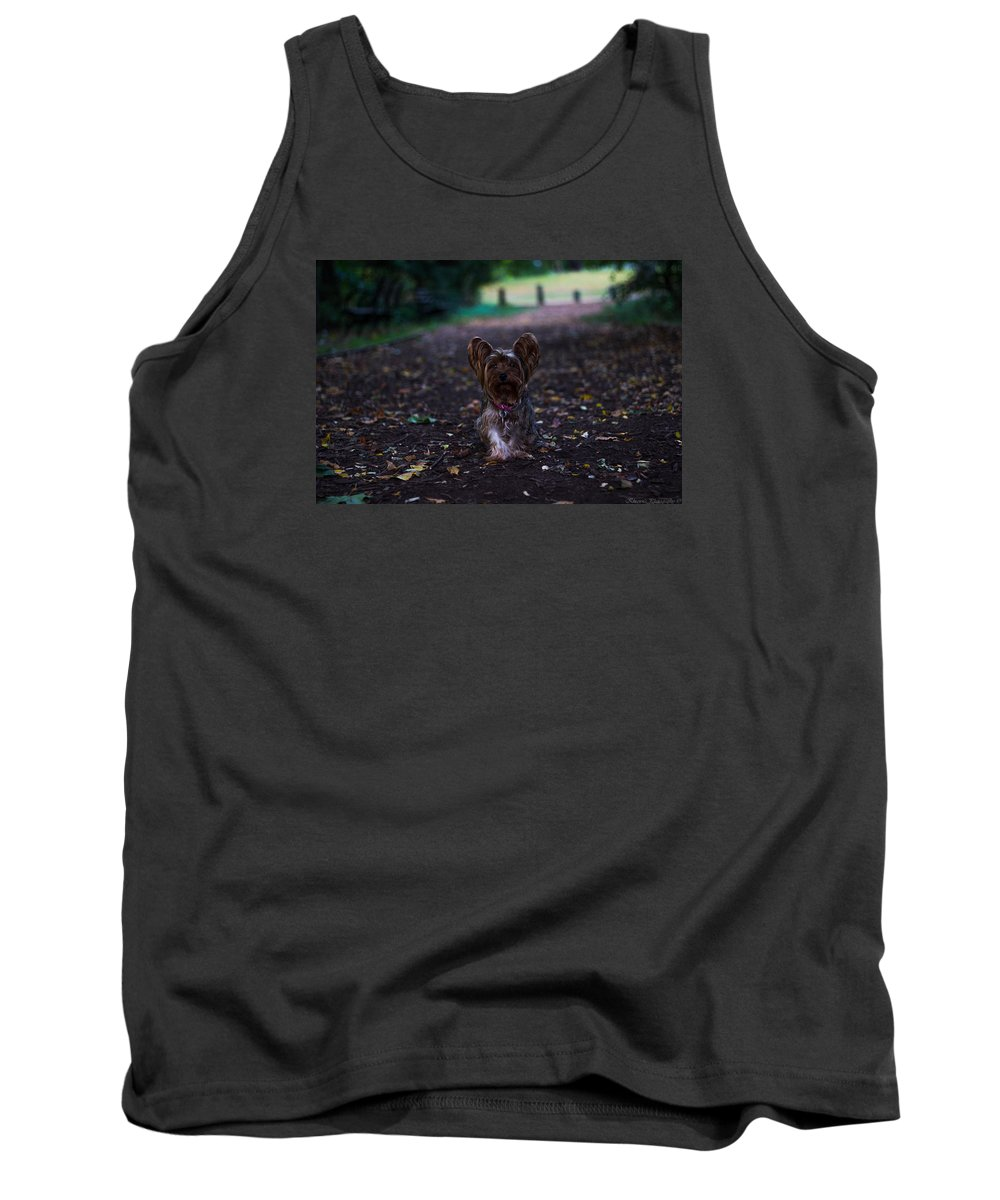Tank Top featuring the photograph Lost Puppy by Saul Tavarez