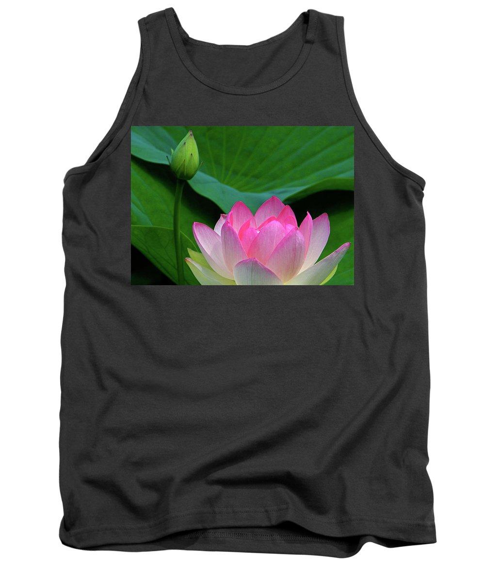 Floral Tank Top featuring the photograph Lotus Siblings by Byron Varvarigos