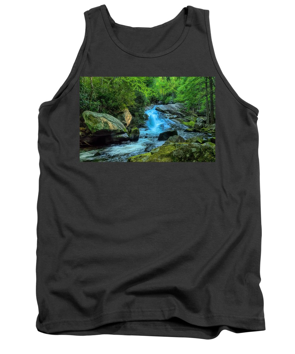 Waterfall Tank Top featuring the photograph Lower Lynn Camp Falls Smoky Mountains by Martin Belan