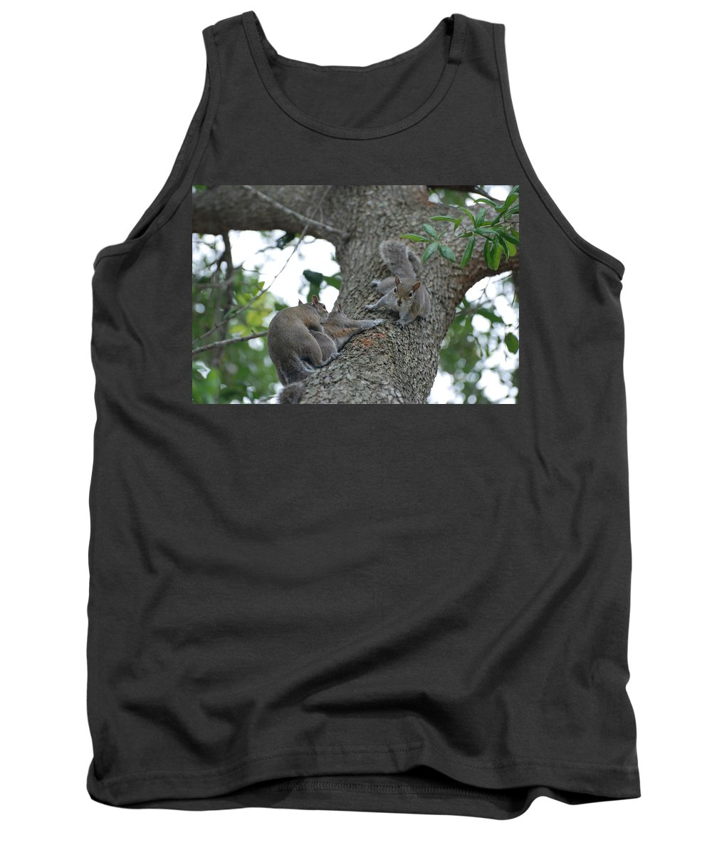 Squirrel Tank Top featuring the photograph Luck Be A Lady by Rob Hans