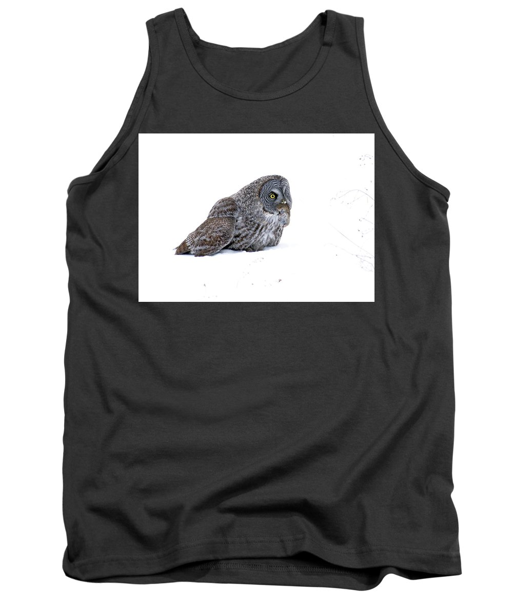 Nature Tank Top featuring the photograph Lunch by Crystal Massop