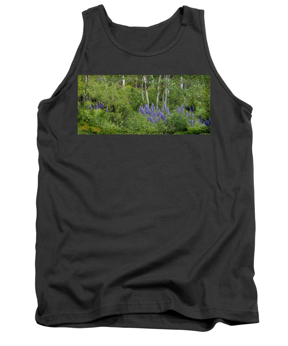 Aspen Tank Top featuring the photograph Lupine And Aspens by Heather Coen