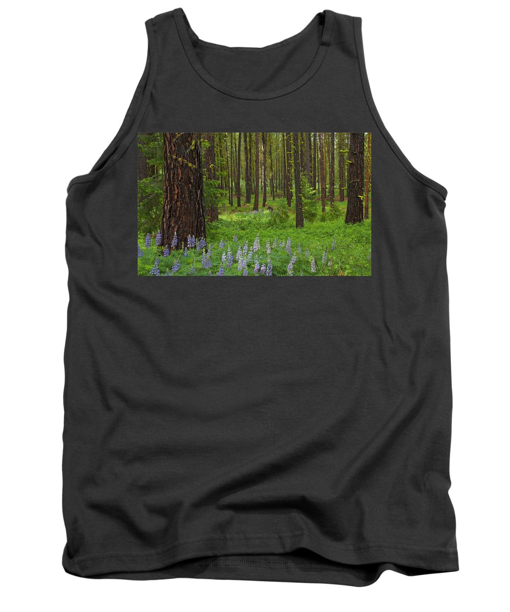 Forest Tank Top featuring the photograph Lupine Carpet by Mike Dawson