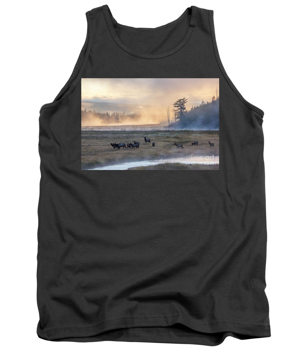 Elk Tank Top featuring the photograph Madison Morning by Carolyn Fox