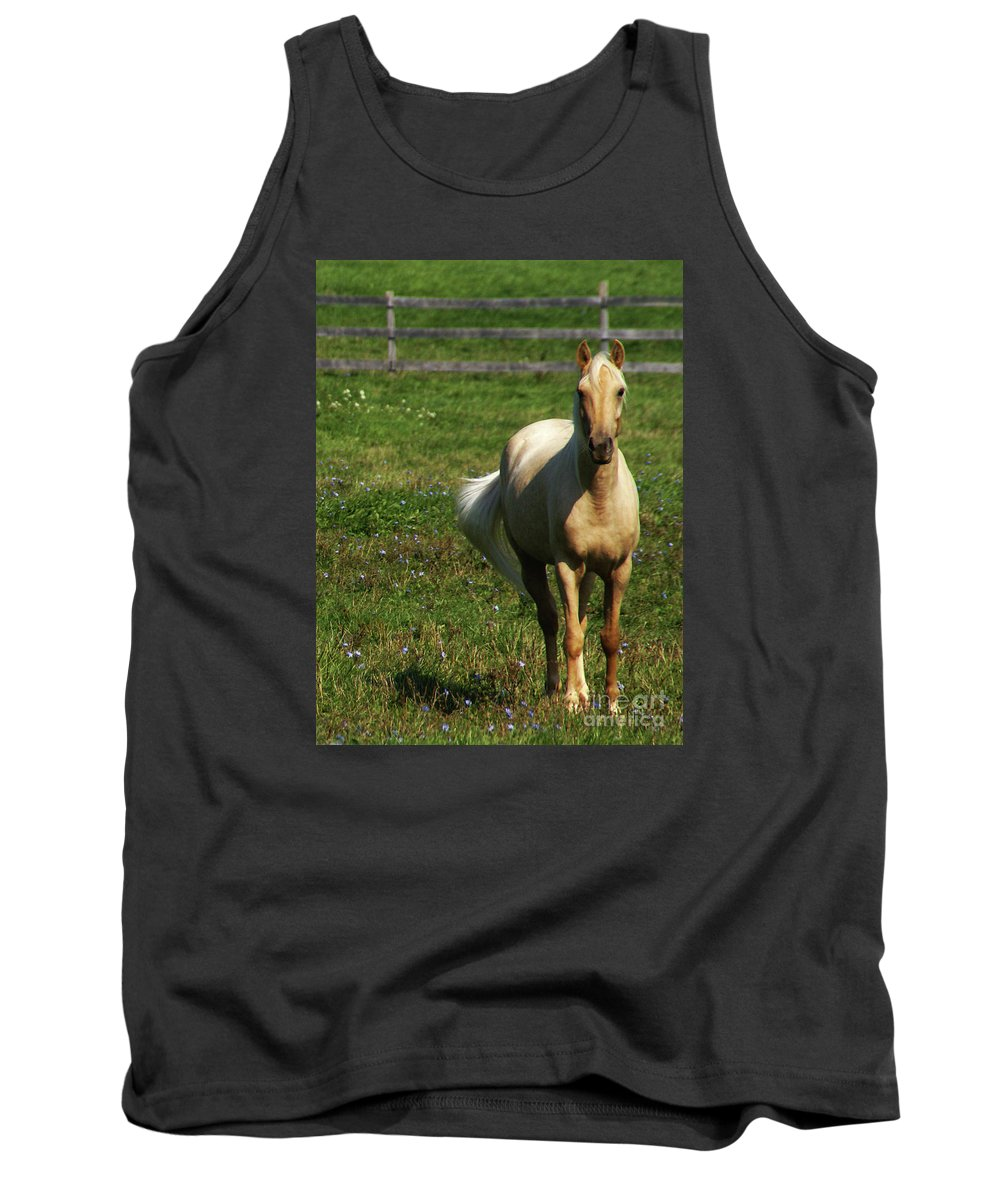 Horse Tank Top featuring the photograph Maggie - Michigans Morning Breeze by Linda Shafer