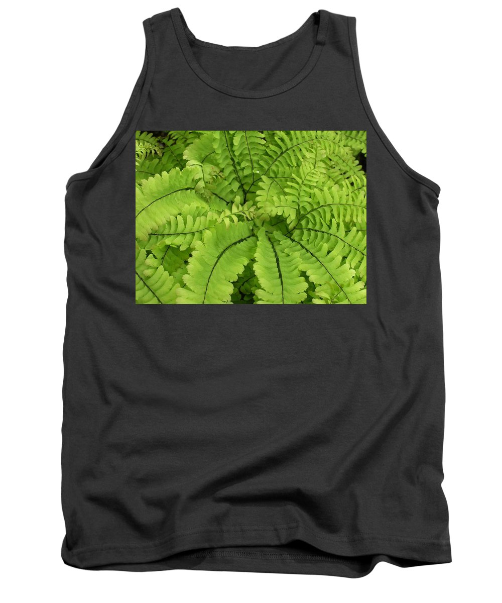 Fern Tank Top featuring the photograph Maidenhair by Nelson Strong