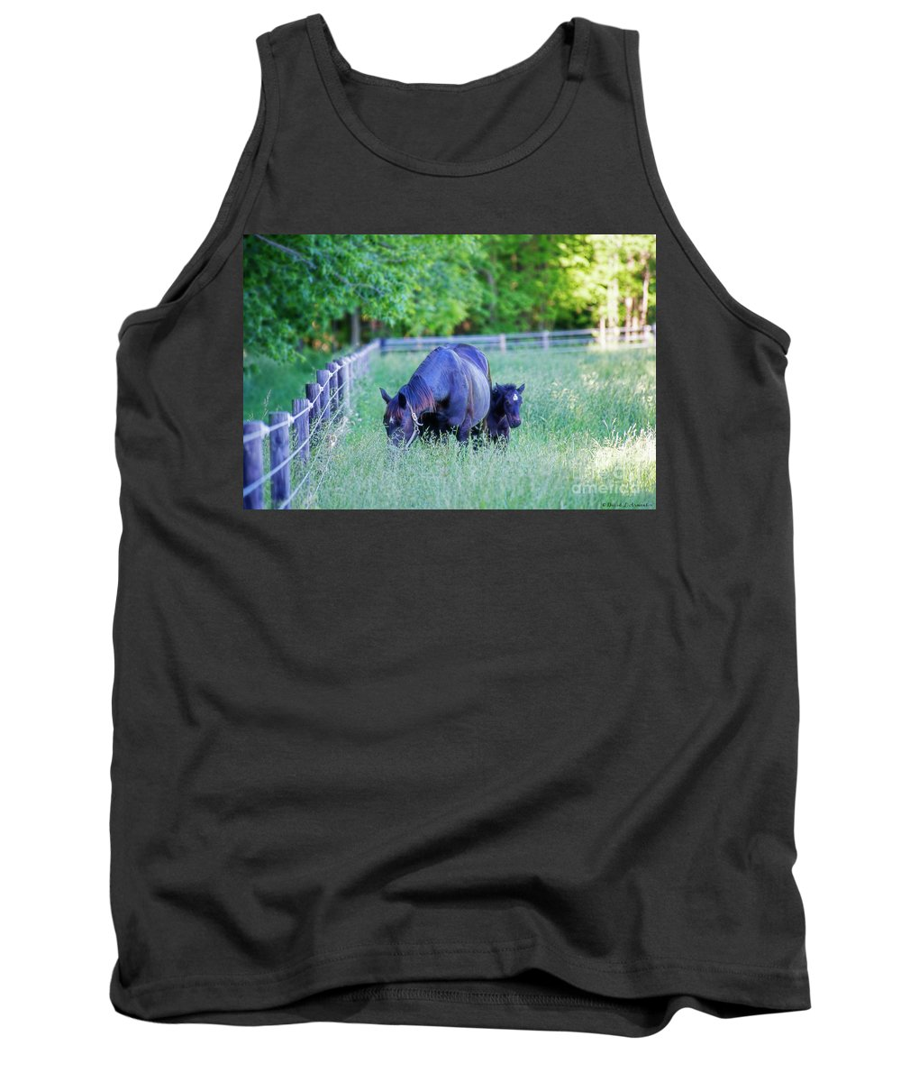 Mare Tank Top featuring the photograph Mare And Foal In Shadows by David Arment