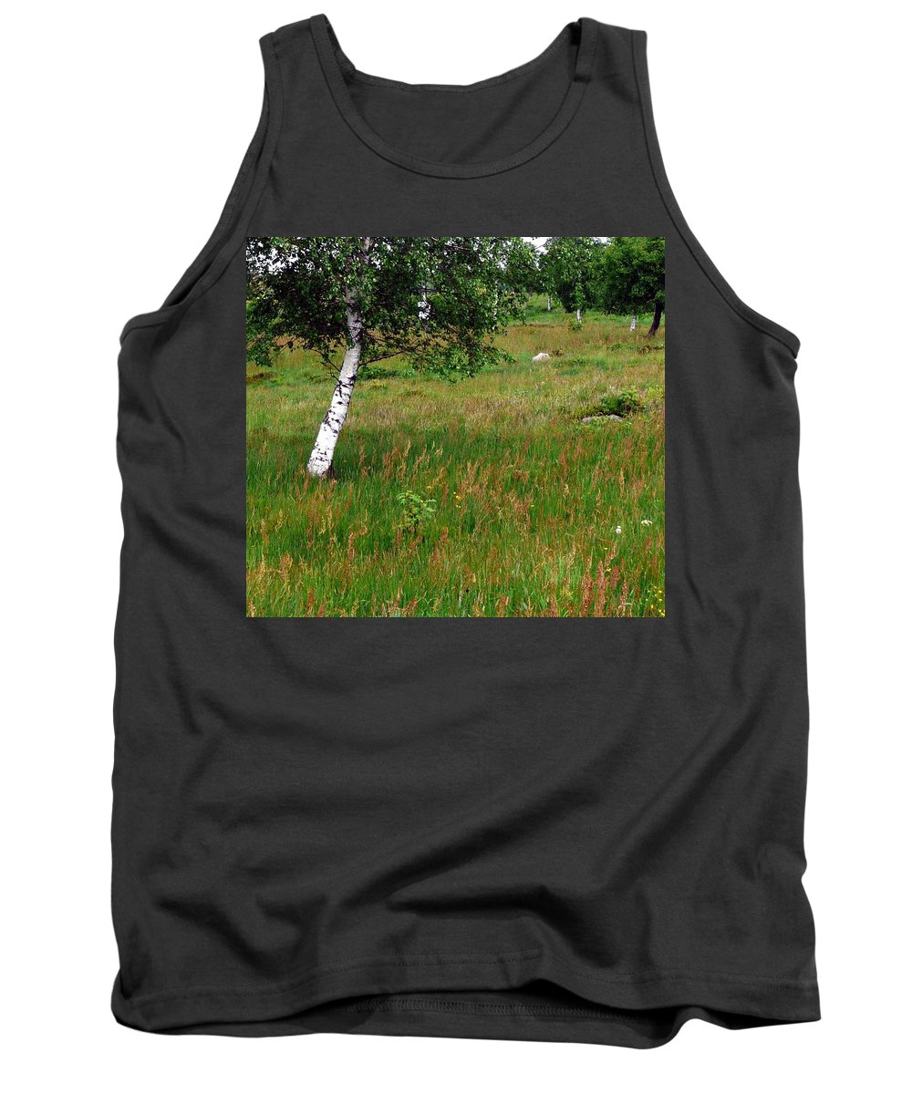 Landscape Tank Top featuring the photograph Meadow With Birch Trees by Valerie Ornstein
