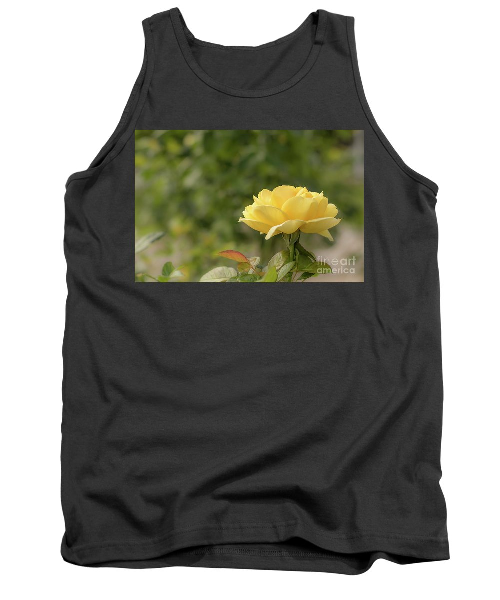 1997 Tank Top featuring the photograph Michelangelo Hybrid Tea Rose, Yellow Rose Originally Produced B by Eiko Tsuchiya