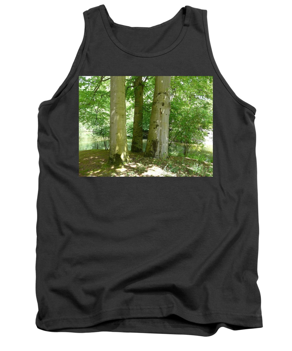 Landscape Tank Top featuring the photograph Mighty Beech Trees by Valerie Ornstein