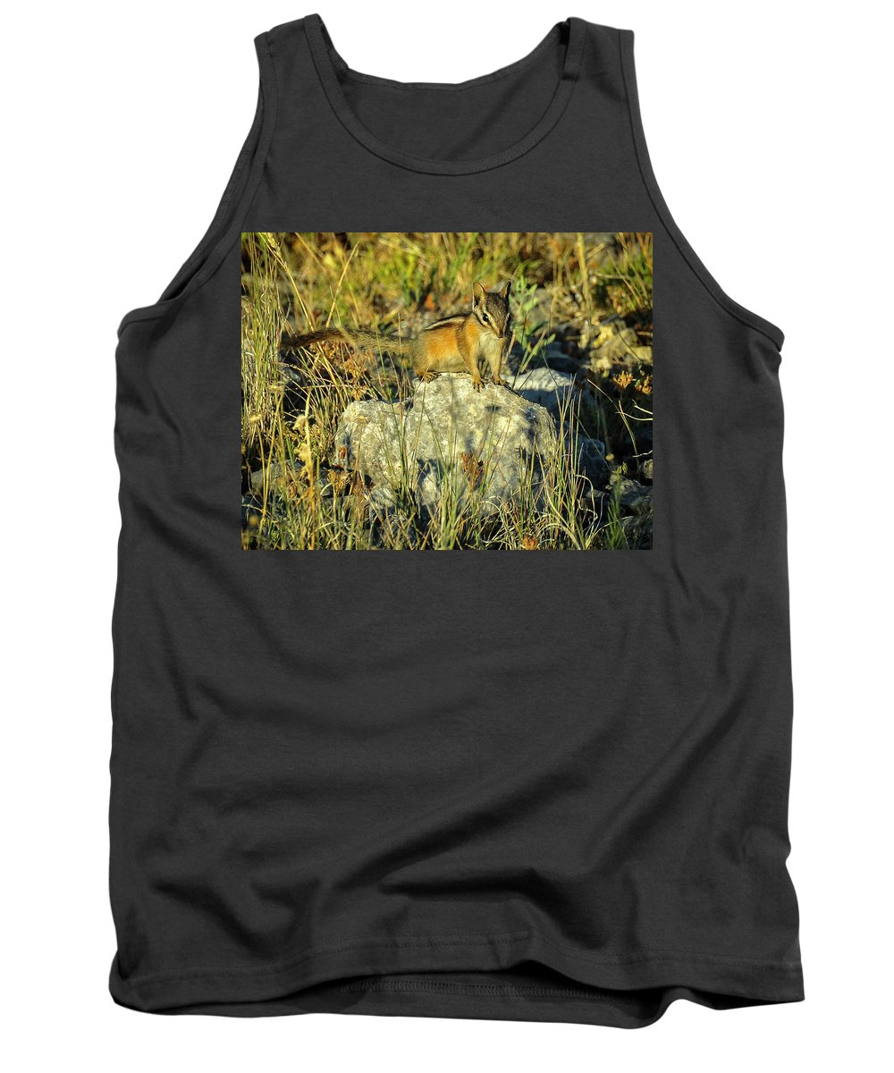 Tank Top featuring the photograph Mini Might by Dan Kinghorn