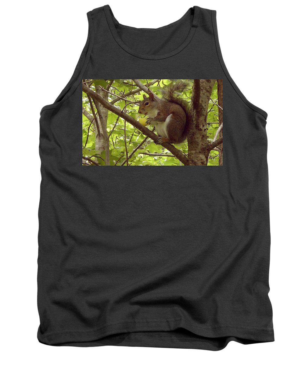 Squirrel Tank Top featuring the photograph Mmmmm Good by Mary Rogers