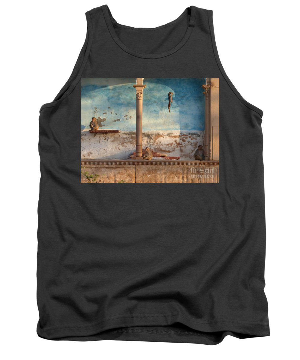 Monkey Tank Top featuring the photograph Monkeys At Sunset by Jean luc Comperat