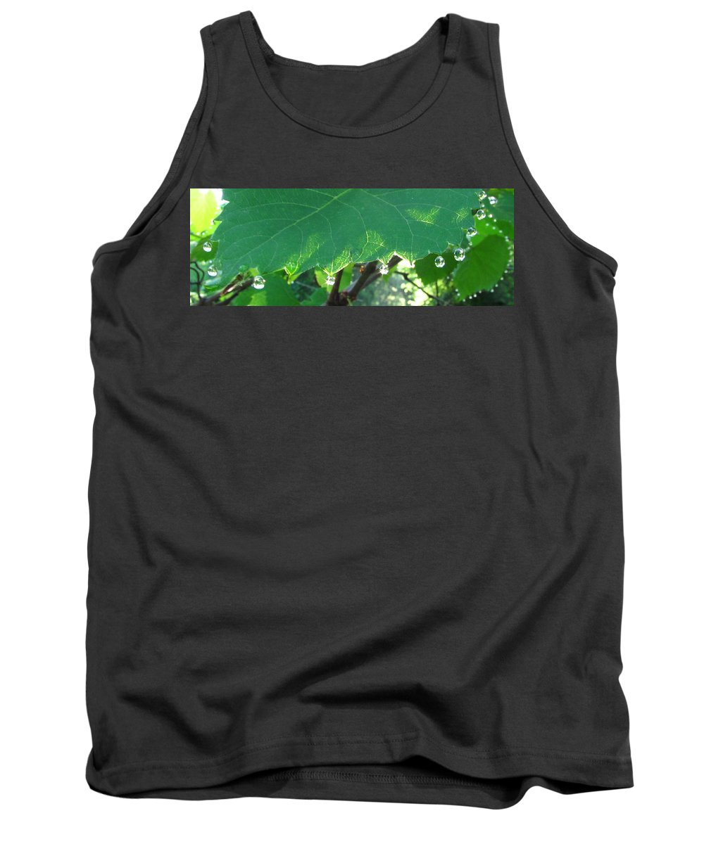 Morning Dew Images Prints Forest Flora Photograph Prints Liquid Gems Forest Jewelry Water Droplets Sunlight Woods Forest Complexity Tank Top featuring the photograph Morning Dew Diamonds by Joshua Bales