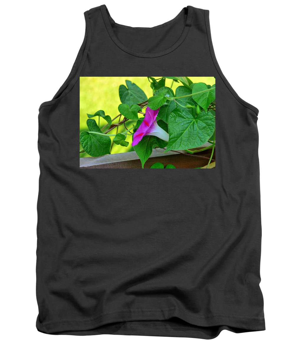 New England Photos Tank Top featuring the photograph Morning Glories by Nancie DeMellia