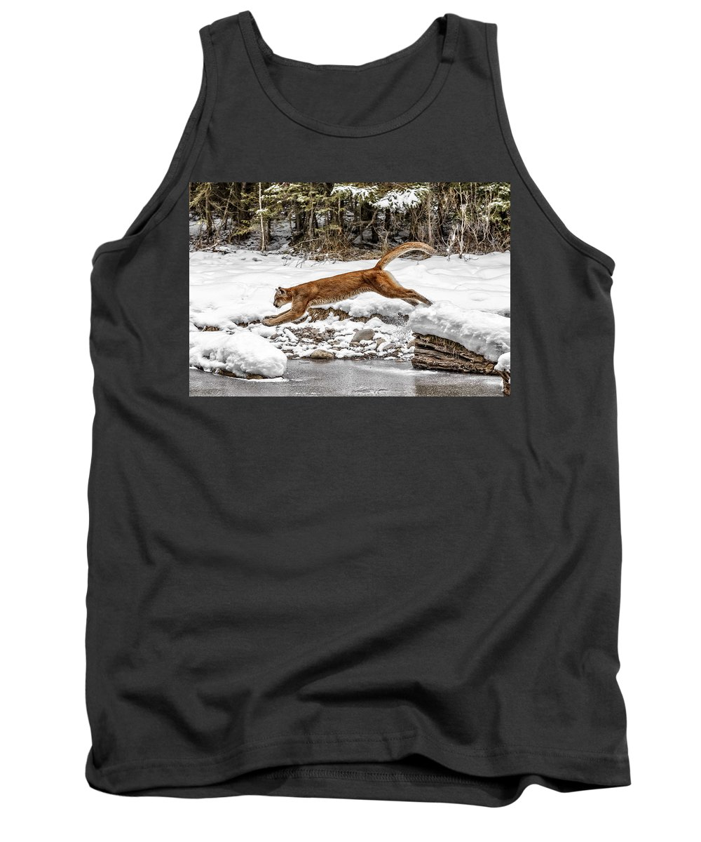 Mountain Lion Leap Tank Top featuring the photograph Mountain Lion Leap by Wes and Dotty Weber