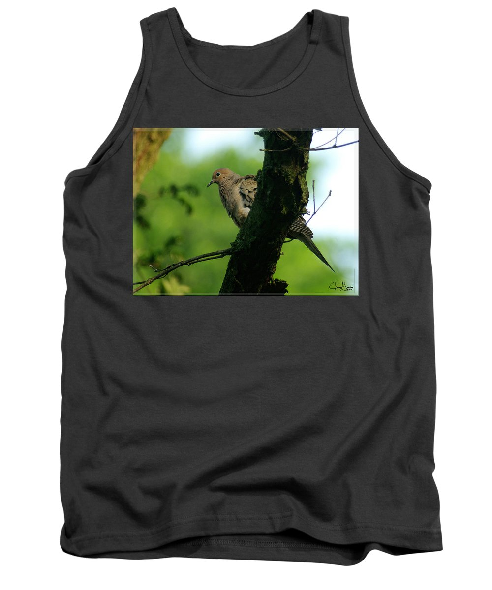 mourning Dove jenny Gandert Gandert Bird Oak Mourning Morning Dove Sweet Gentle Oak Tree Spring Green Ohio Tank Top featuring the photograph Mourning Dove by Jenny Gandert