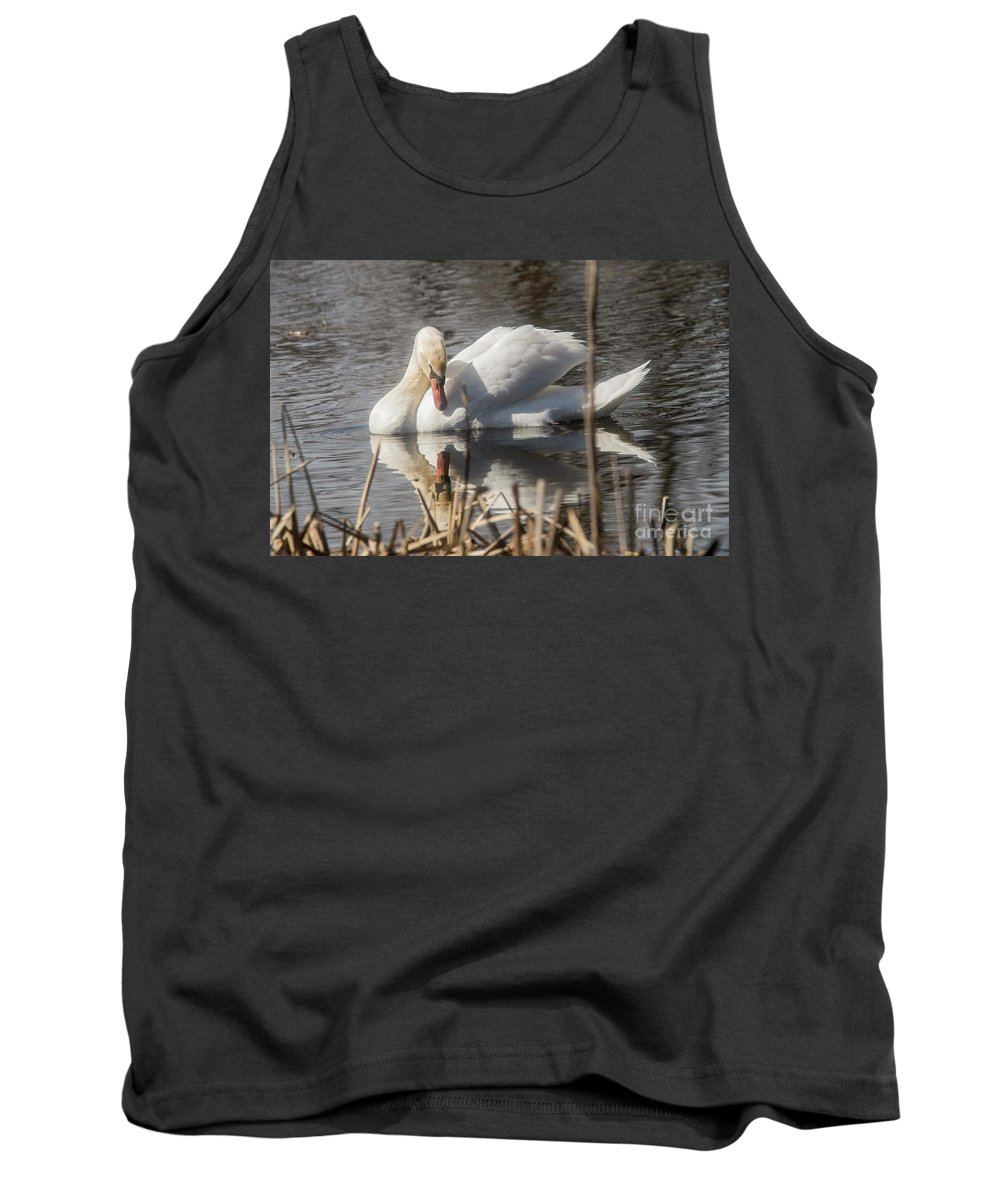 Mute Swan Tank Top featuring the photograph Mute Swan - 3 by David Bearden