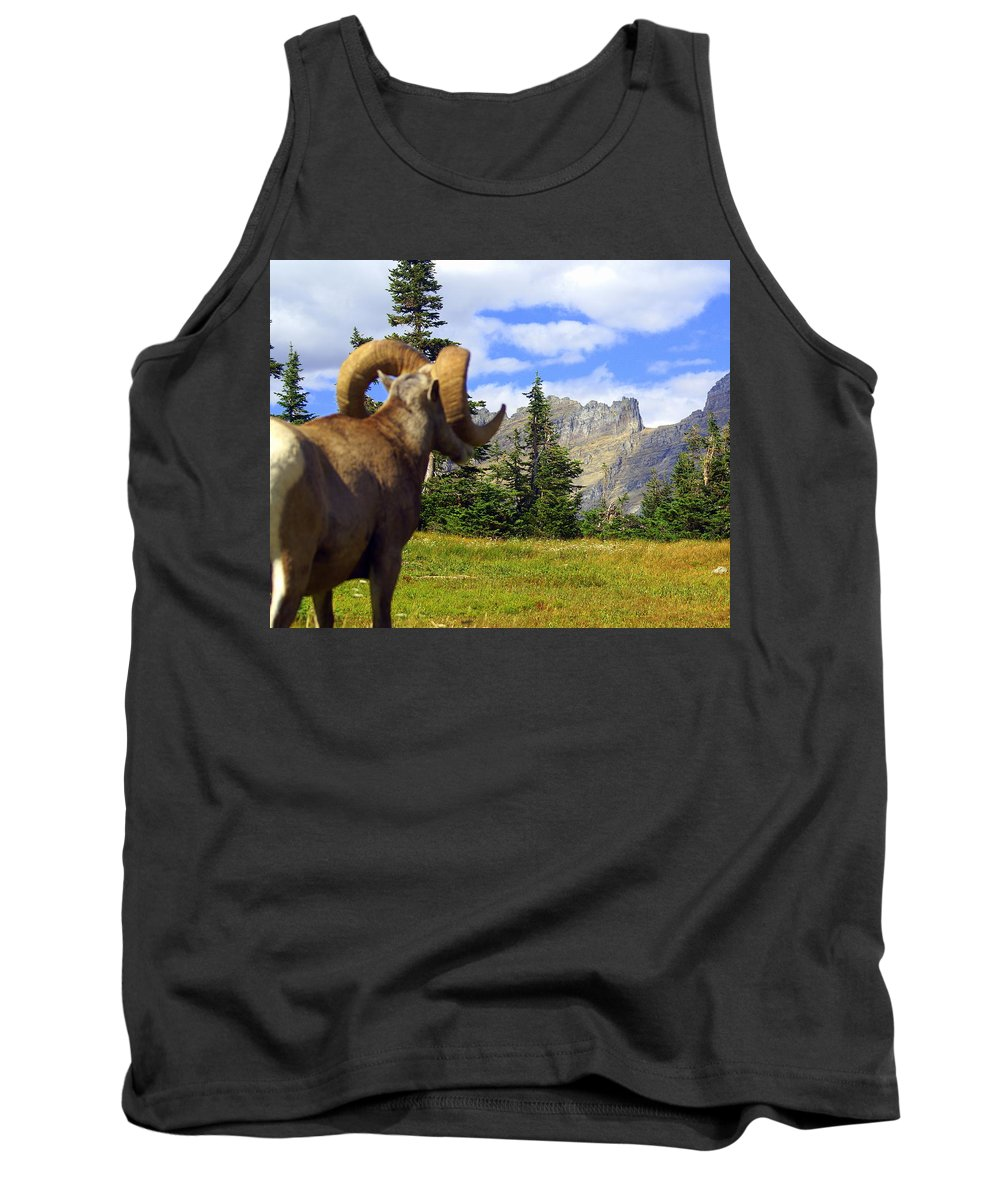 Glacier National Park Tank Top featuring the photograph My Kingdom by Marty Koch