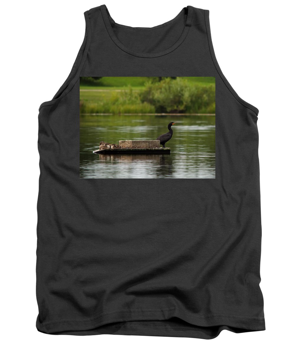 Nature Tank Top featuring the photograph Naptime Lookout by Crystal Massop