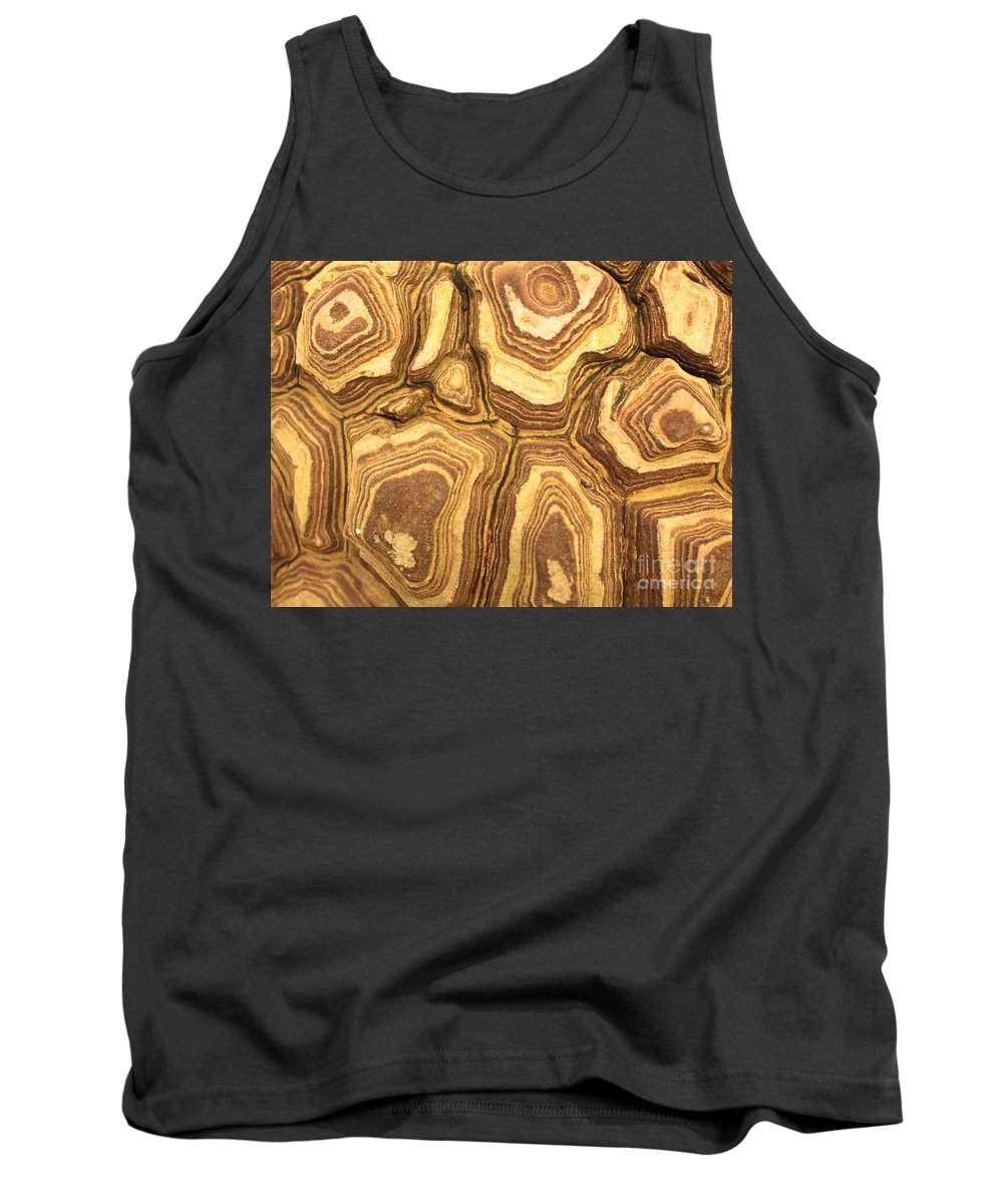 Nature Tank Top featuring the photograph Nature's Interesting Patterns by Carol Groenen