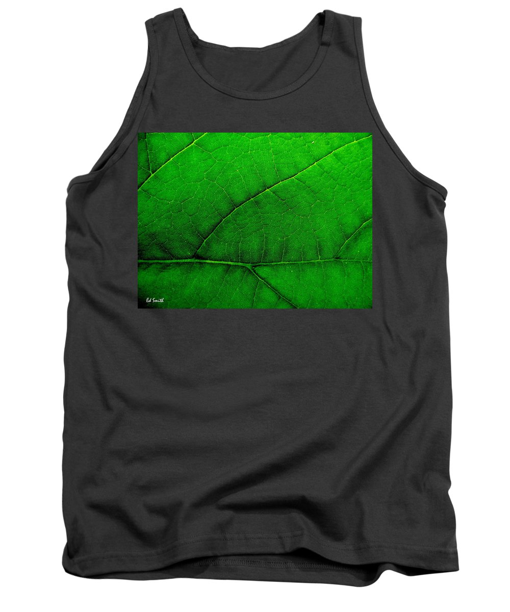Natures Road Map Tank Top featuring the photograph Natures Road Map by Ed Smith